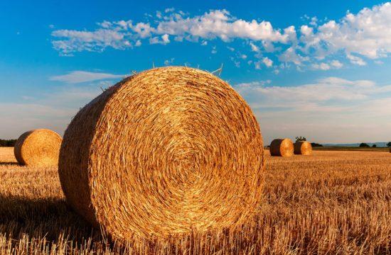 Siatka do prasy rolniczej CNH